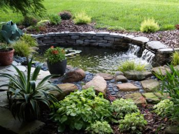 Ponds & Pond Accessories